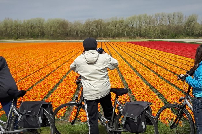 Cycle Amsterdam to Bruges
