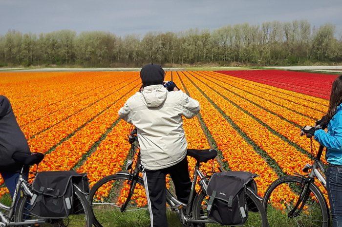 Passeio de Bicicleta Amsterdam a Bruges